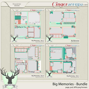 Big Memories Template Bundle