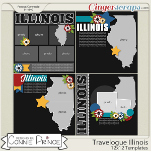 Travelogue Illinois - 12x12 Temps (CU Ok) by Connie Prince
