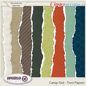 Camp Out - Torn Papers