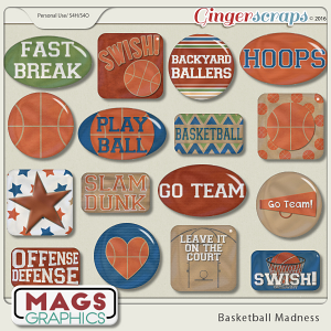Basketball Madness FLAIR