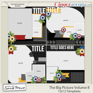 The Big Picture Volume 8 - 12x12 Temps (CU Ok)