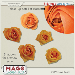 CU PNG Yellow Roses Pack by MagsGraphics