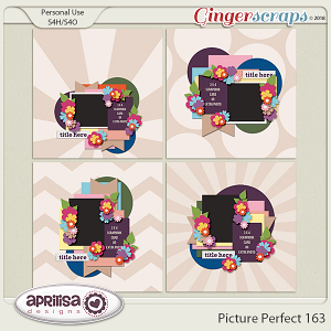 Picture Perfect 163 by Aprilisa Designs