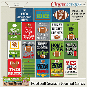 Football Season Journal Cards by Clever Monkey Graphics