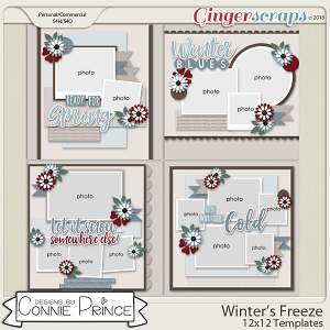 Winter's Freeze - 12x12 Temps (CU Ok) by Connie Prince