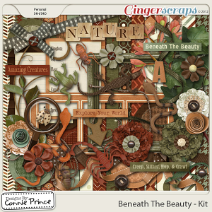 Beneath The Beauty - Kit
