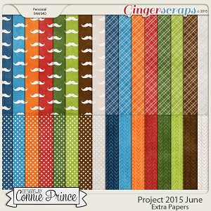 Project 2015 June - Extra Papers