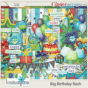 Big Birthday Bash by Lindsay Jane