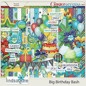 Big Birthday Bash by Lindsay Jane