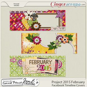 Project 2015 February - Facebook Timeline Covers