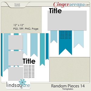 Random Pieces 14 Templates by Lindsay Jane