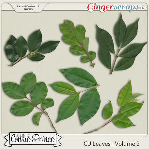 Commercial Use Leaves Volume 2
