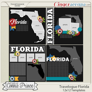 Travelogue Florida - 12x12 Temps (CU Ok)