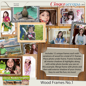 Wood Frames No.1 by Clever Monkey Graphics