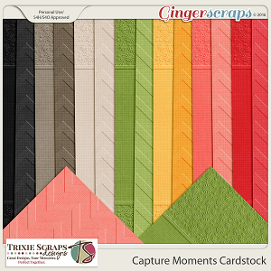 Capture Moments Cardstock by Trixie Scraps Designs