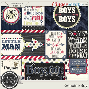 Genuine Boy Pocket Scrap Cards