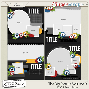 The Big Picture Volume 9 - 12x12 Temps (CU Ok)