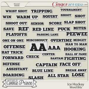 Ice Hockey - Word Bits