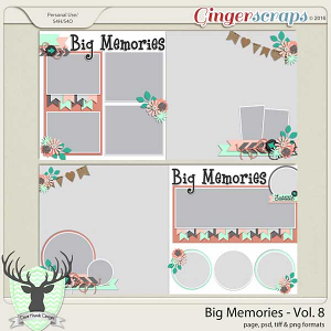 Big Memories Vol 8