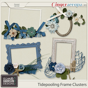 Tidepooling Frame Clusters by Aimee Harrison
