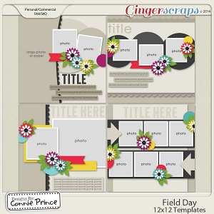 Field Day - 12x12 Temps (CU Ok)