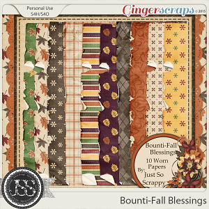 Bounti-Fall Blessings Worn and Torn Papers