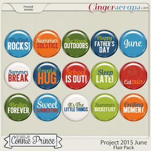 Project 2015 June - Flair Pack