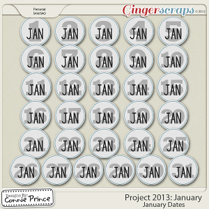 Project 2013: January - Dates