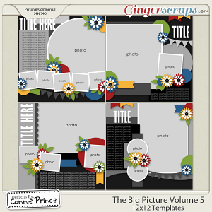 The Big Picture Volume 5 - 12x12 Temps (CU Ok)