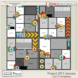 Project 2015 January - 12x12 Temps (CU Ok)