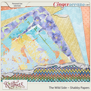 The Wild Side Shabby Papers