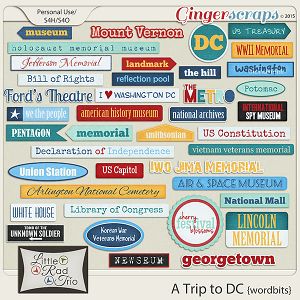 A Trip to DC {word bits} by Little Rad Trio