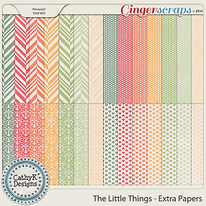The Little Things - Extra Papers