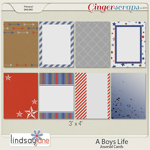 A Boys Life Journal Cards by Lindsay Jane