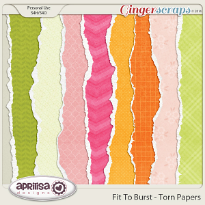 Fit To Burst - Torn Papers