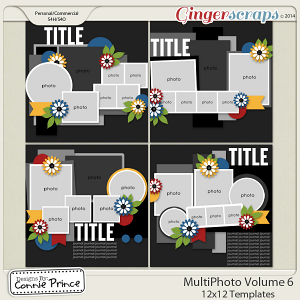 MultiPhoto Volume 6 - 12x12 Temps (CU Ok)