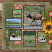 Fur Trade Frontier Layout by Poki