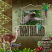 Into The Wild South America - Layout by Lana