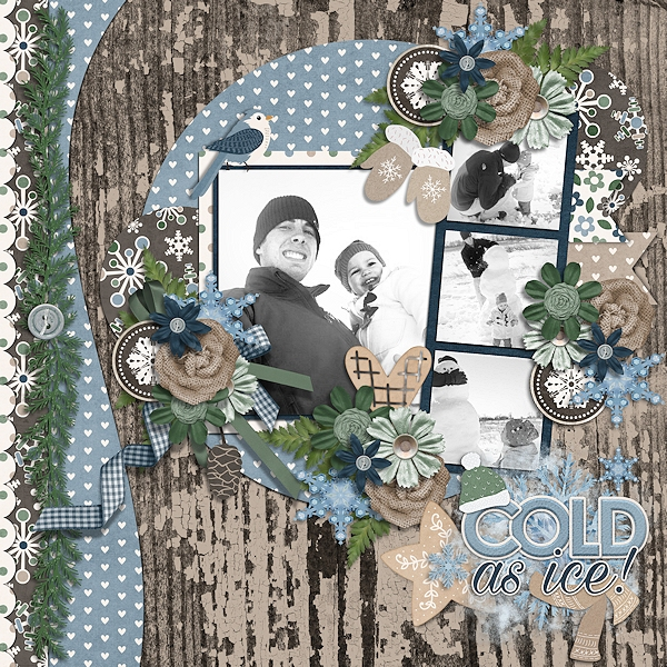 CT Layout using Built In Borders Volume 3 by Connie Prince
