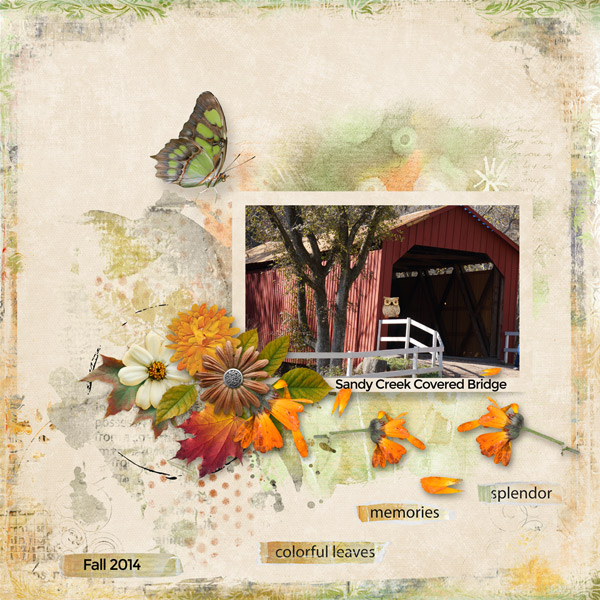 Playful Autumn Detail by Cathy