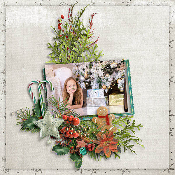 Christmas Memories by Snickerdoodle Designs: Layout by Norma