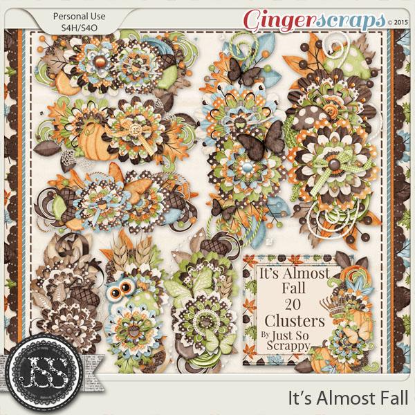 b4c19decdb743c GingerScraps :: Embellishments :: It's Almost Fall Clusters