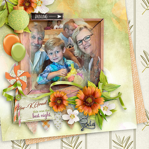 Backyard Party Layout by Norma