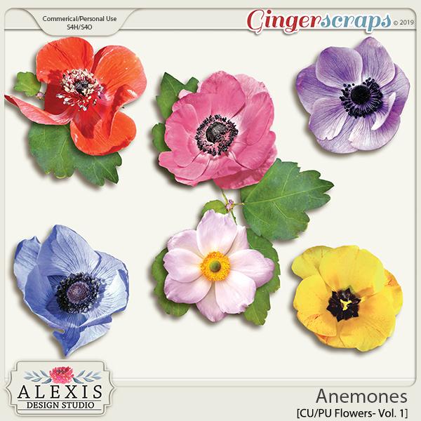 Anemones Vol. 1 - CU by Alexis Design Studio