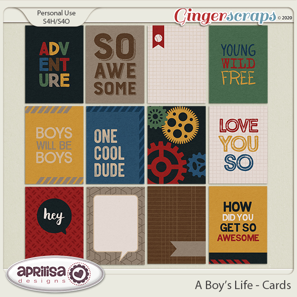 A Boy's Life - Cards by Aprilisa Designs