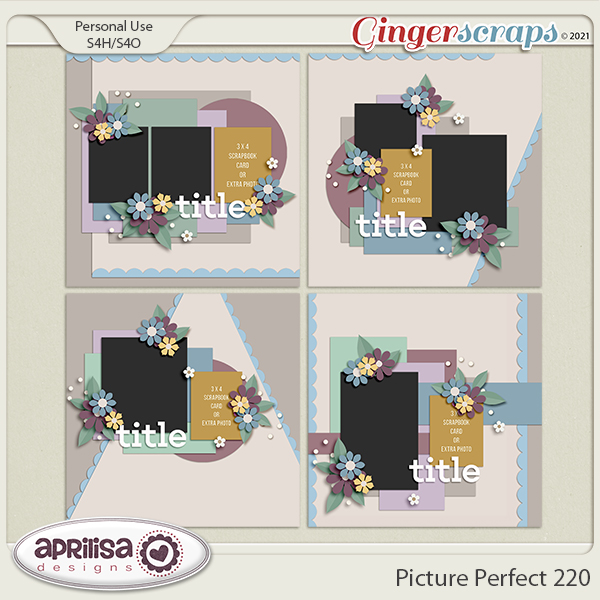 Picture Perfect 220 by Aprilisa Designs