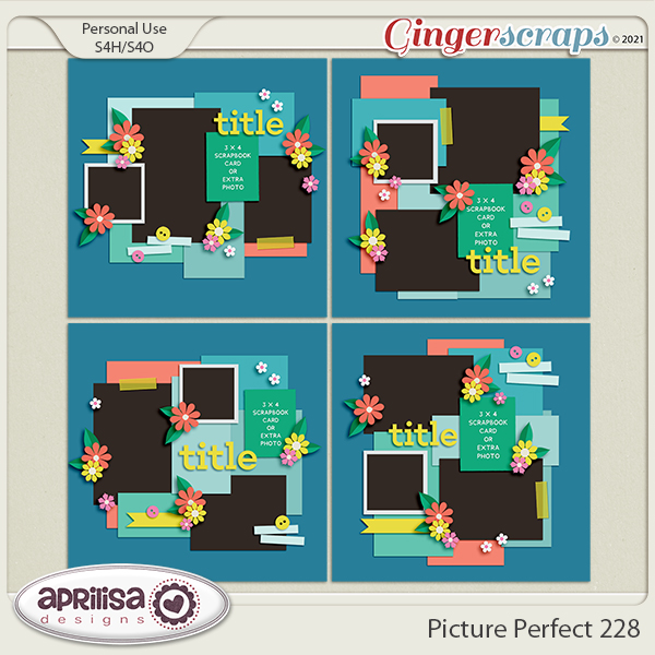 Picture Perfect 228