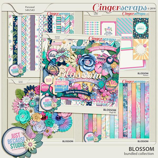 Blossom Bundle by JB Studio