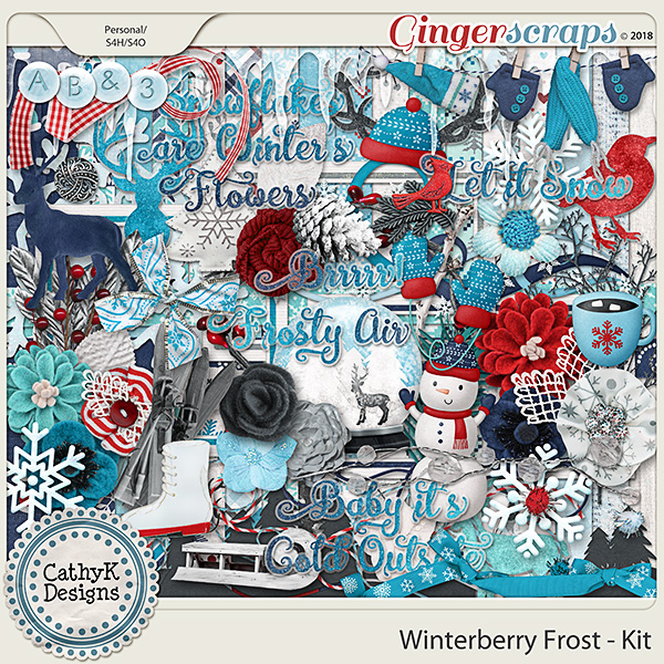 Winterberry Frost - Kit