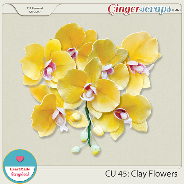 CU 45 - Clay flowers - orchid